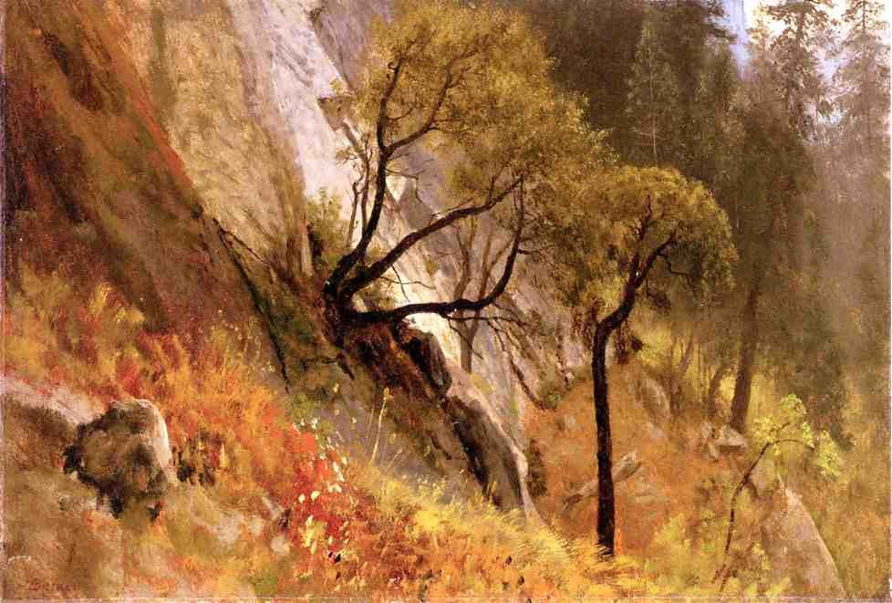 Landscape Study Yosemite California by Albert Bierstadt