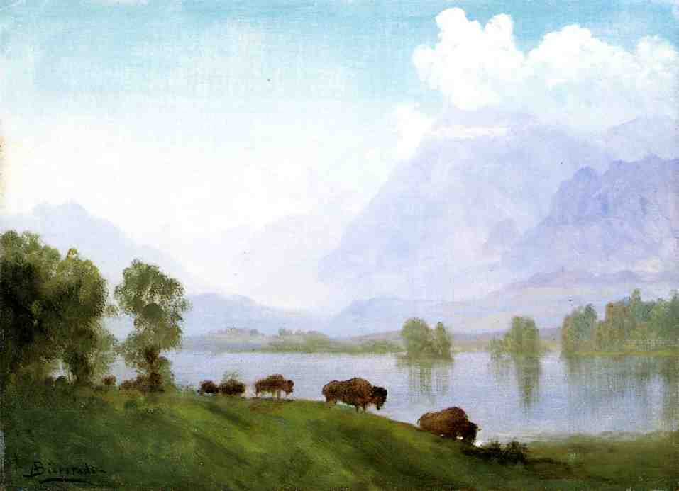 Buffalo Country by Albert Bierstadt