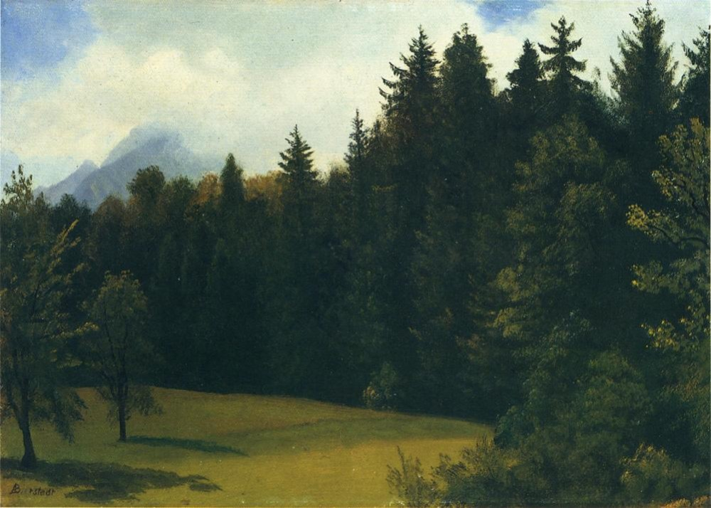 Mountain Resort by Albert Bierstadt