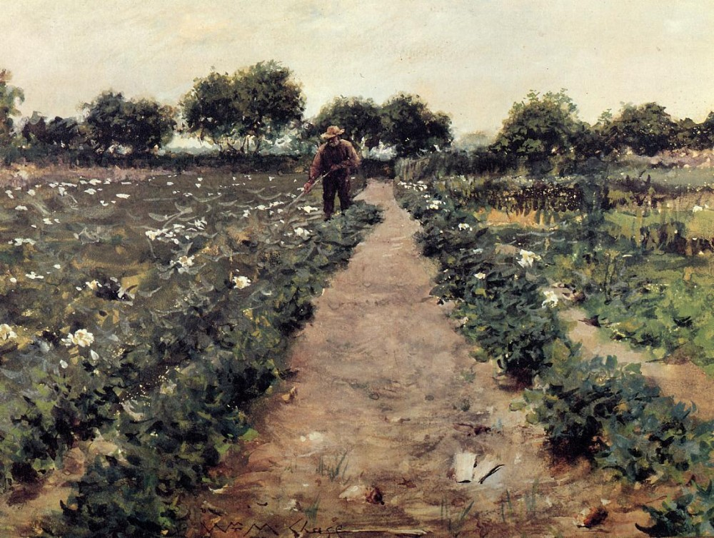 The Potato Patch aka Garden Shinnecock by William Merritt Chase