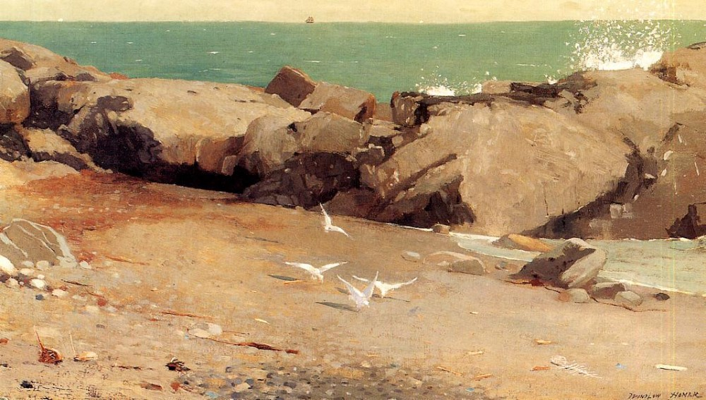 Rocky Coast and Gulls by Winslow Homer