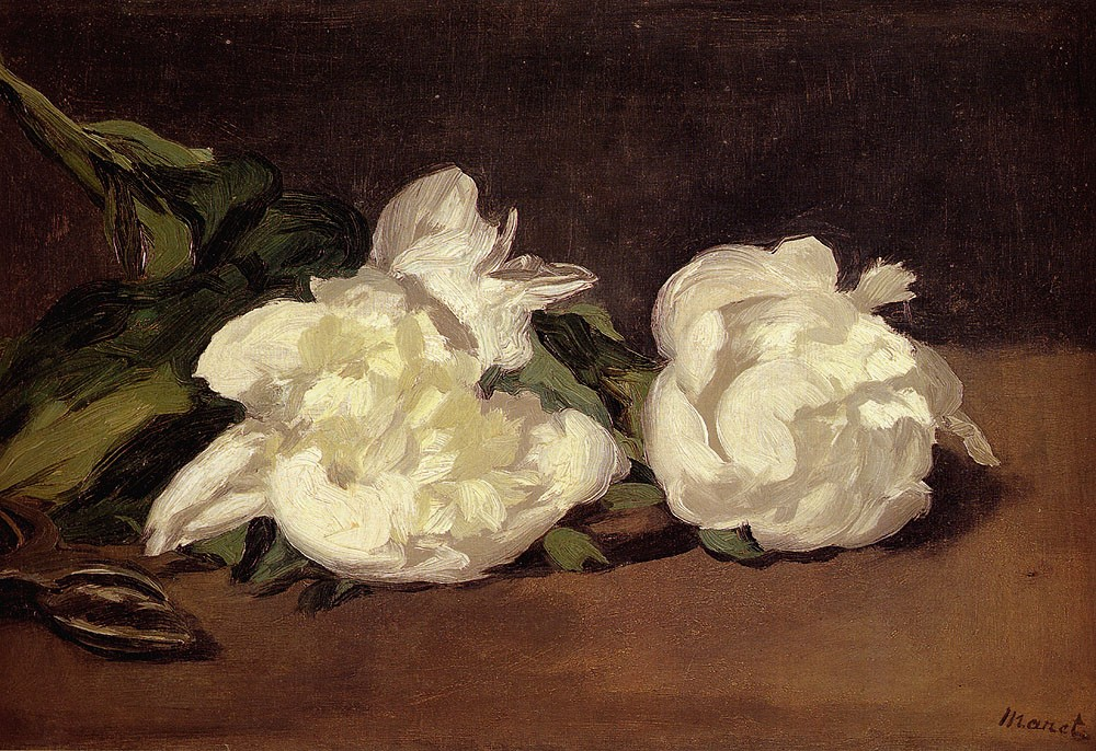 Branch Of White Peonies With Pruning Shears by Édouard Manet