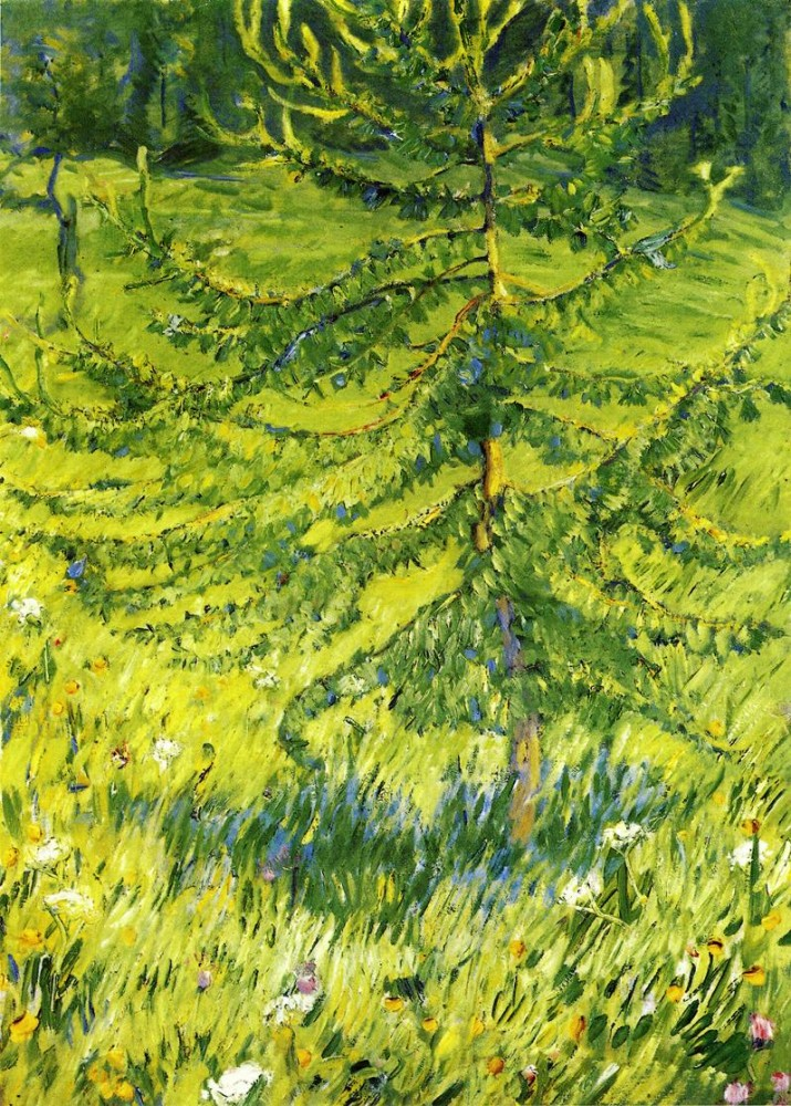 Larch Sapling by Franz Marc